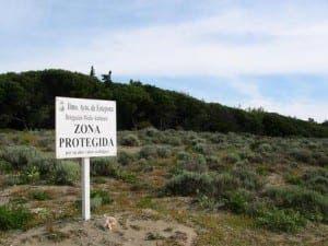 Matas Verdes in Estepona