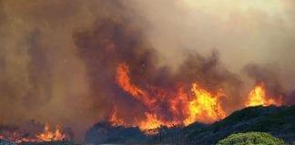 ALCAIDESA FIRE  e