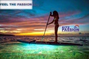 Kite-Passion