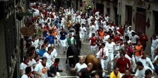 Pamplona fights festival urine e