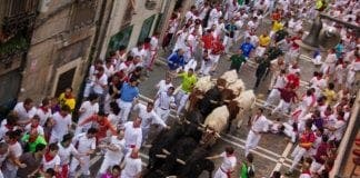 Running of the Bulls on Estafeta Street e