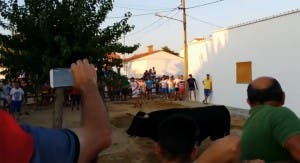 A spectator has died at another Spanish bull-running fiesta after being gored to death as he tried to escape over a fence.