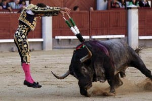bullfight-madrid