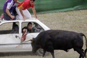 4x4-bullfights-1