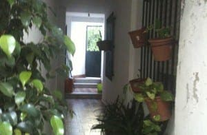 paddy-housebuilding-blog-spain-2