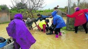 diariosur-flood-rescue