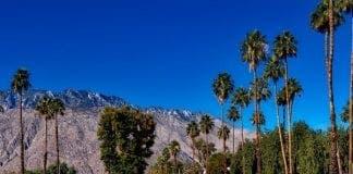 palm springs   e