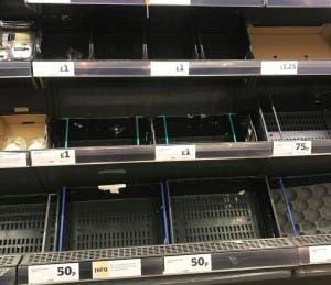salad shortage