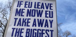 brexit banner  e