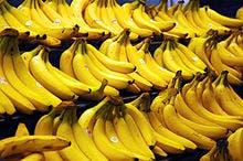cocaine-bananas