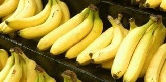 cocaine bananas e
