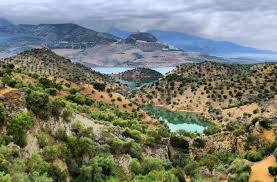 ECO-FRIENDLY: Andalucia businesses lead the way