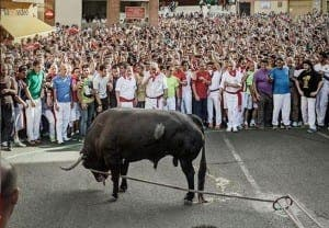 BULL BAN: Correbour at risk