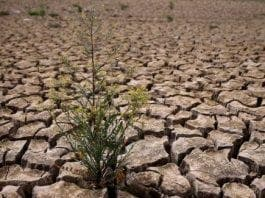 drought measures e