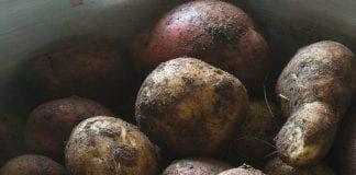 potatoes e