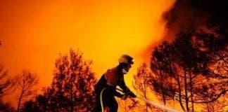 wildfire e