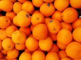 local food oranges