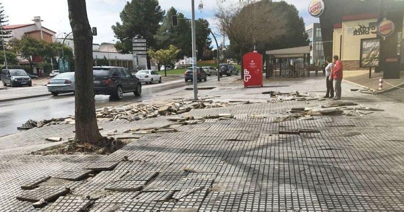 Avenida de Arcos Efectos Borrasca Félix Jerez
