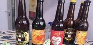 beer palma