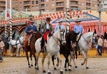 horse sevilla