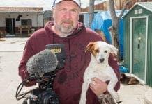 dog documentary