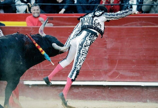 WATCH: Matador in Spain flung in air by bull and gored in buttocks