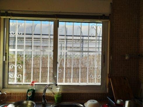 Trudie Lammers Window