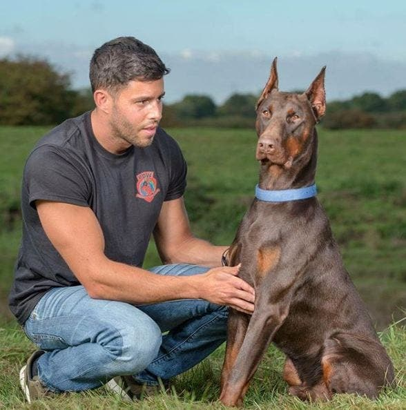 Barcelona Basketball Player Set To Join Set Of A Listers By Using Protection Dogs Worldwide 2