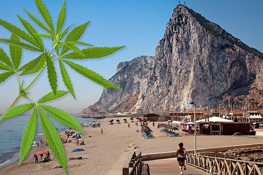 Gibraltar Cannabis 1