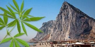 Gibraltar Cannabis