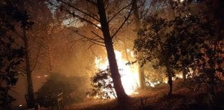 Casares Fire 3
