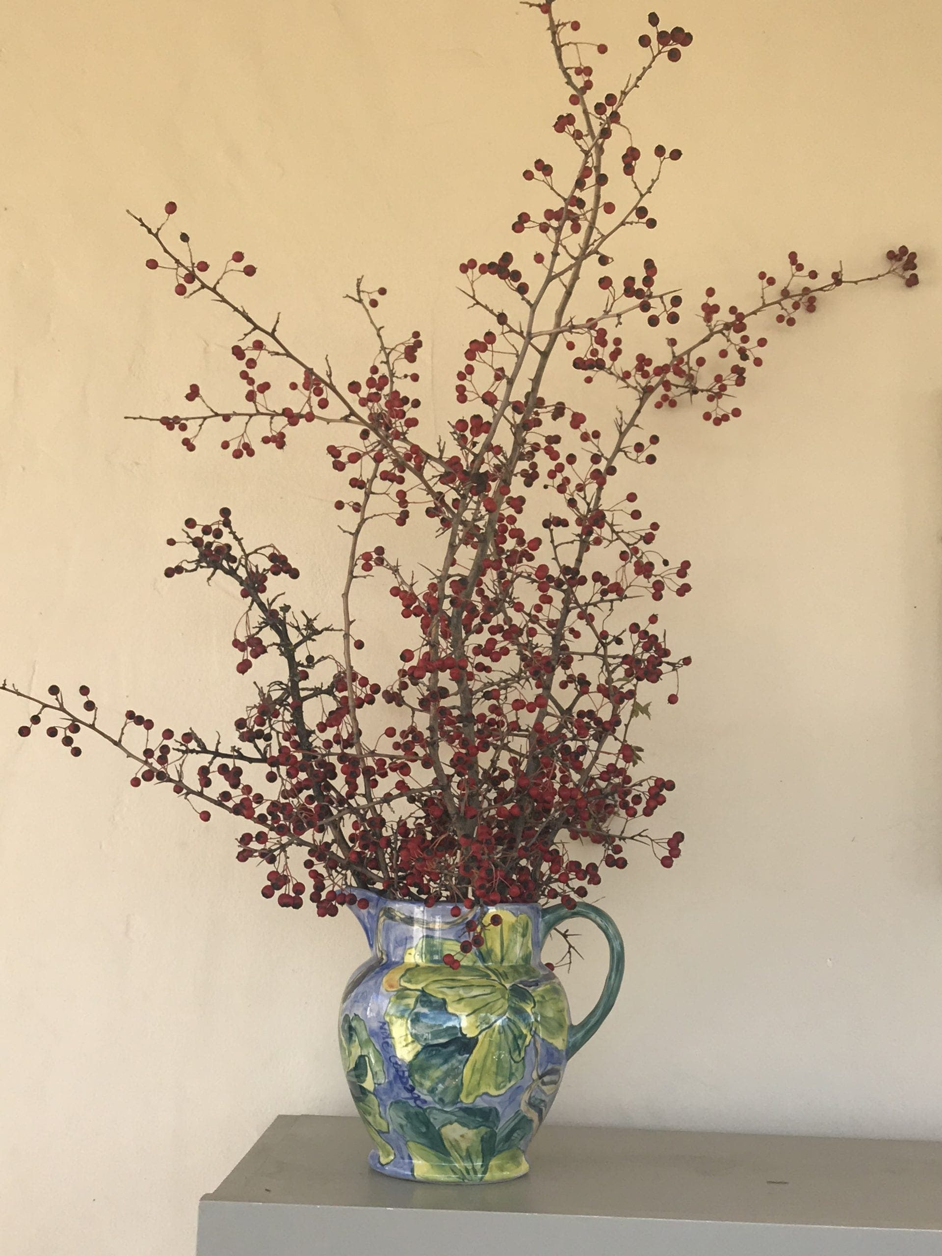Berries Before Foliage Added