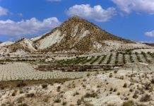 Murcia Dry