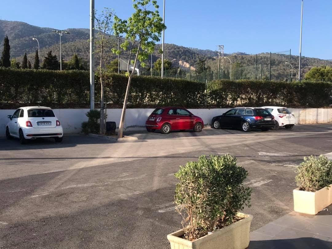 Parking Offender