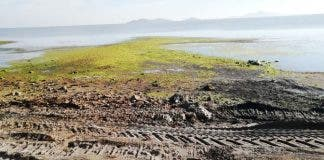 Los Urrutias Muddy Beach