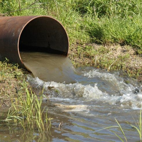 Public officials under investigation for allowing sewage to flow into rivers in Spain's Andalucia