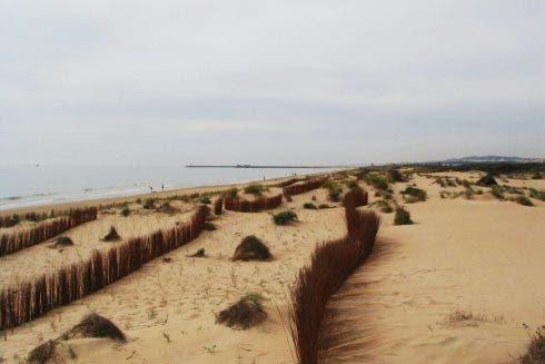 Tusales Beach Guardamar