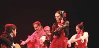 Flamenco Group Performance