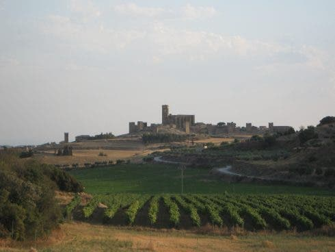 Artejona Navarra