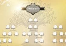 Genealogical Tree Of Your Family