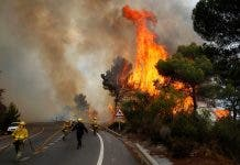 Spain Wildfire