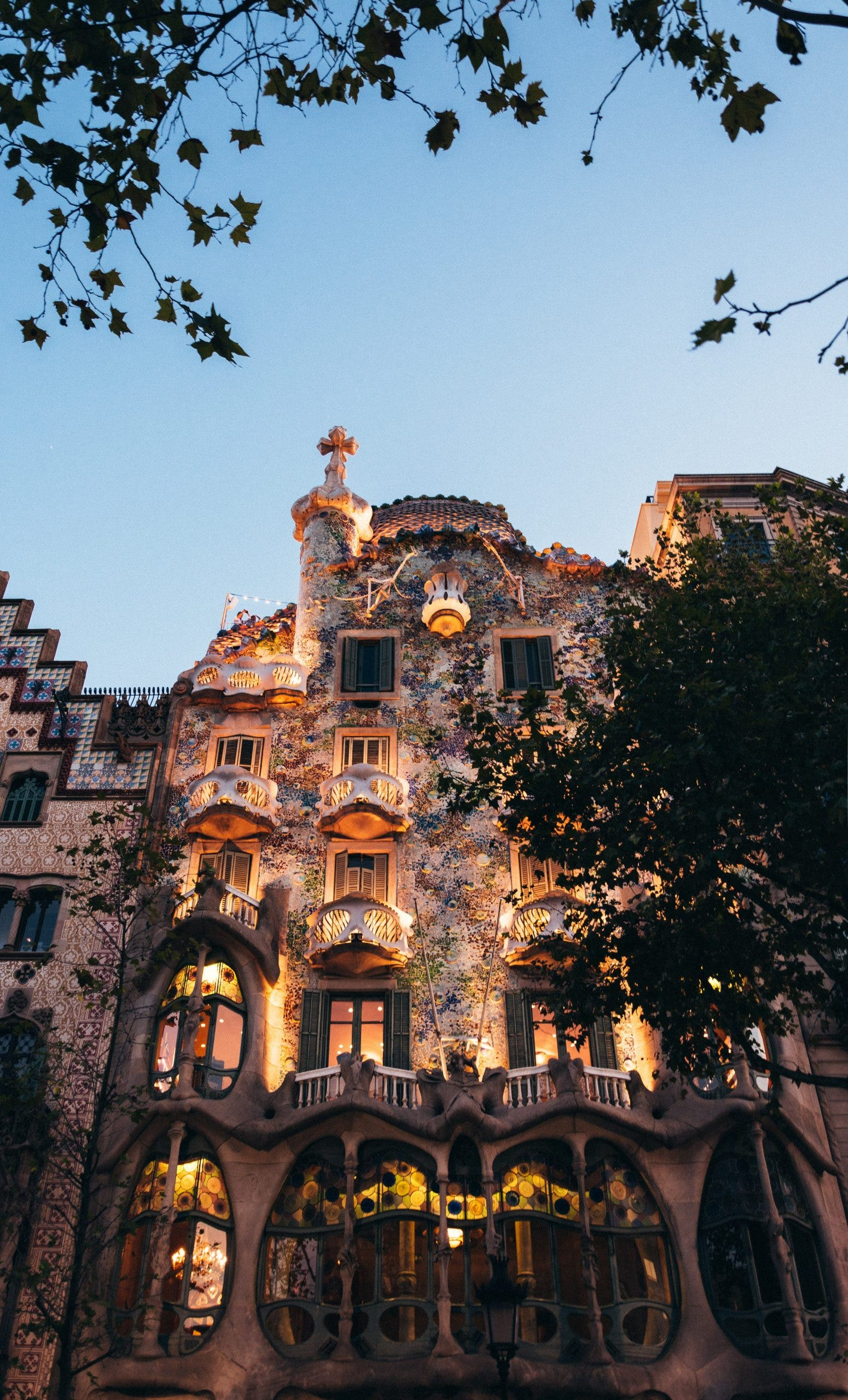Theolive_spanish Class Barcelona2