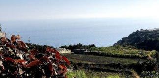 Maro Campo 1030x773 1