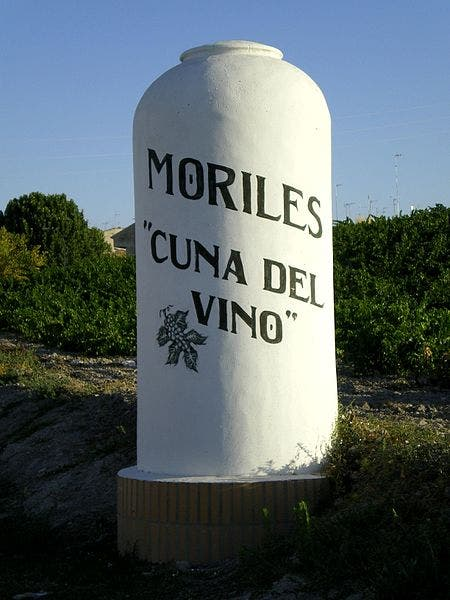 450px 08 Moriles_cono