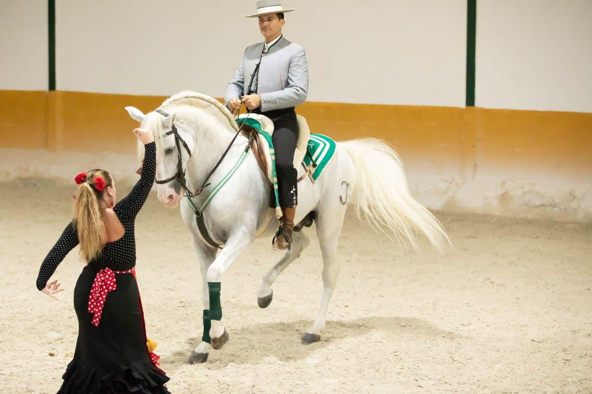 Club Hipico El Ranchito In Torremolinos Horse Show Ritmo A Caballo