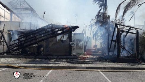 Fire Aftermath Laguna