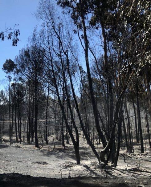 Huelva Fire 5