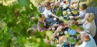 Dinner Under Foliage