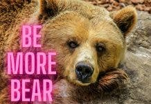 Be More Bear