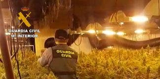 Old Hotel Is Converted Into Massive Marijuana Farm On Spain S Costa Blanca